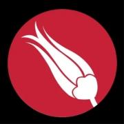نرم افزار Hands on Turkish